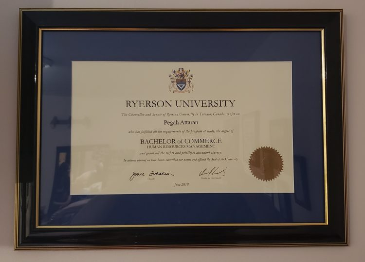 University Degree in Blue Mat and Classic Frame