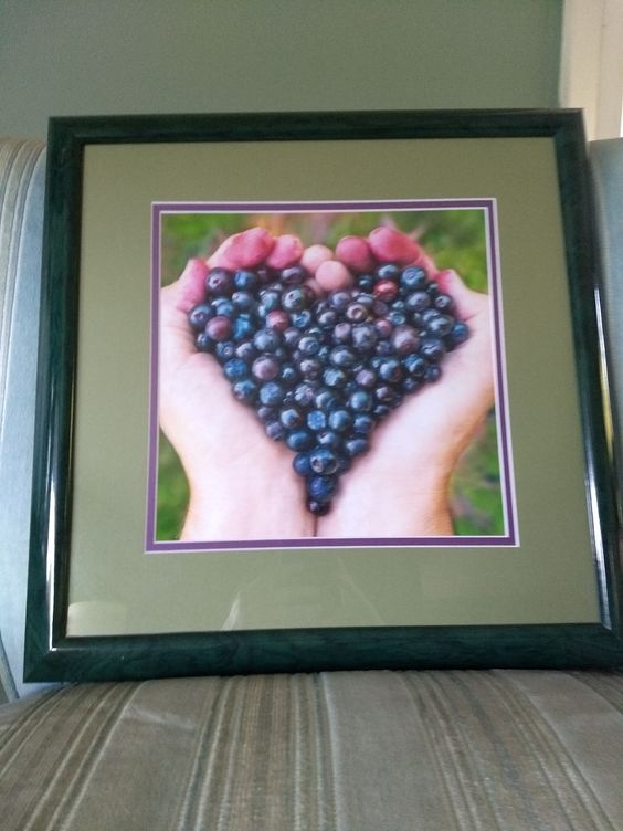 berries centered in a matboard